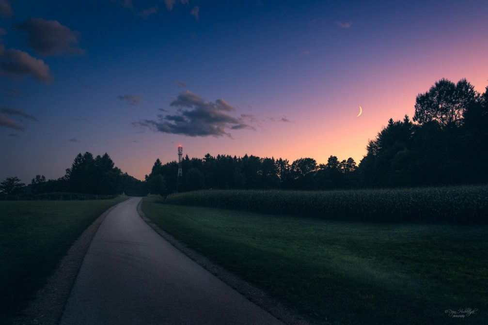 A narrow road leading through the countryside of Zlato Polje at night