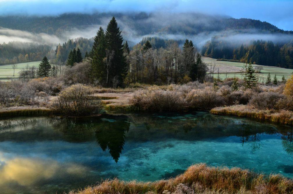 The emerald green Lake Zelenci in Slovenia
