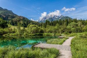 Lake Zelenci Nature Reserve
