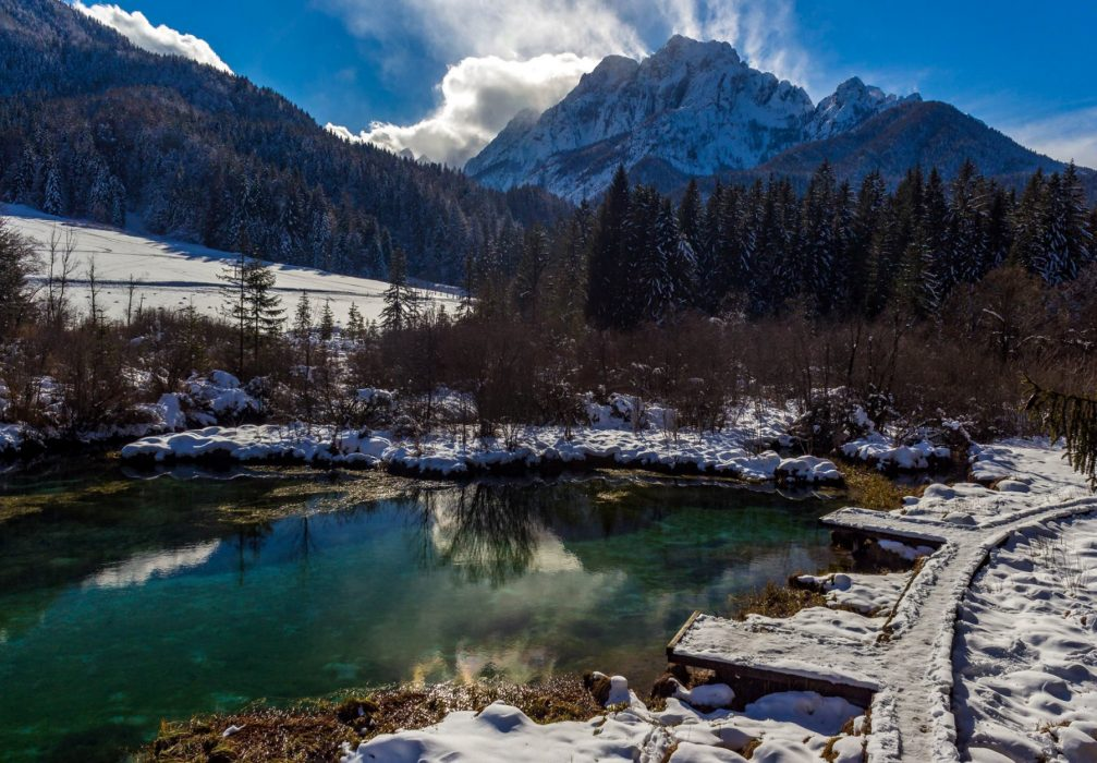 Lake Zelenci and Nature Reserve in winter decorated by a covering of snow