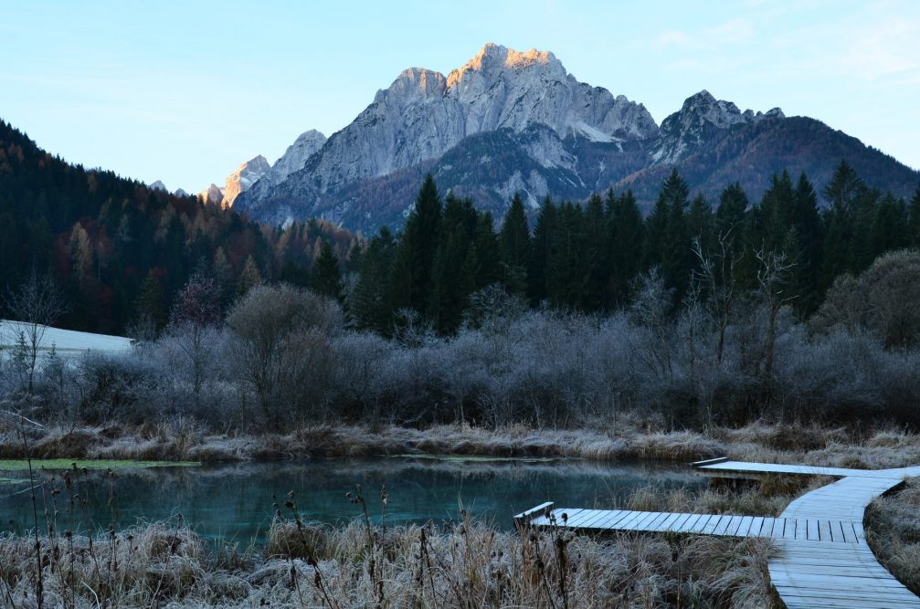 Lake Zelenci and Zelenci Nature Reserve in on a winter morning