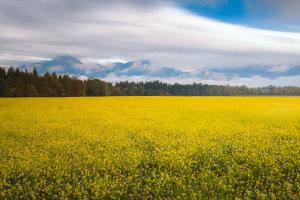 Slovenia landscape pictures by Dejan Hudoletnjak Photography