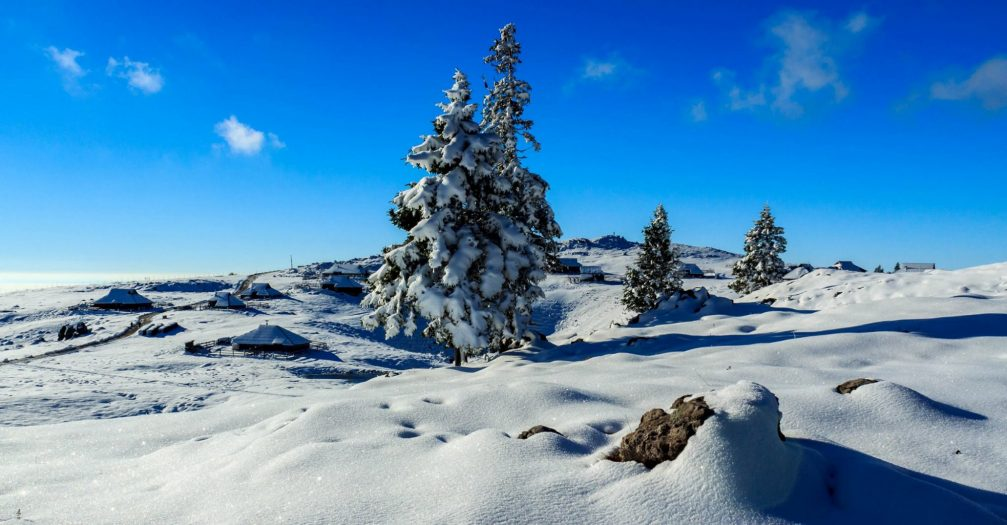 The herdsmen's huts on the Velika Planina plateau in winter with plenty of snow