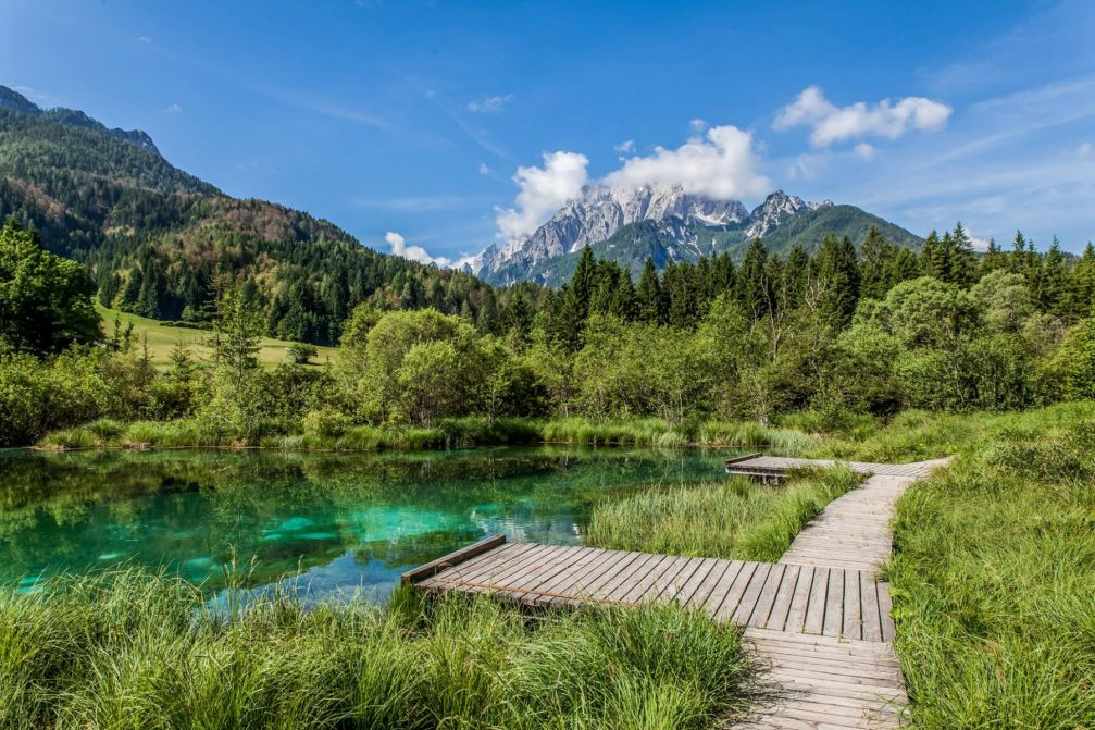 Zelenci Nature Reserve with its emerald green lake and mountains in the background