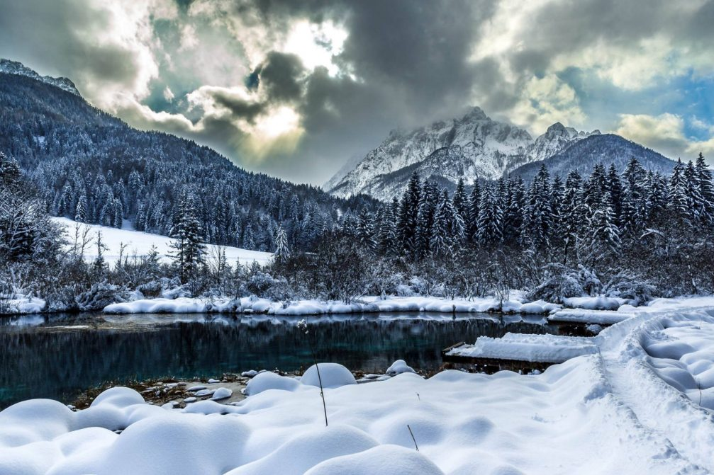 Lake Zelenci in winter with a thick layer of snow covering the Zelenci Nature Reserve