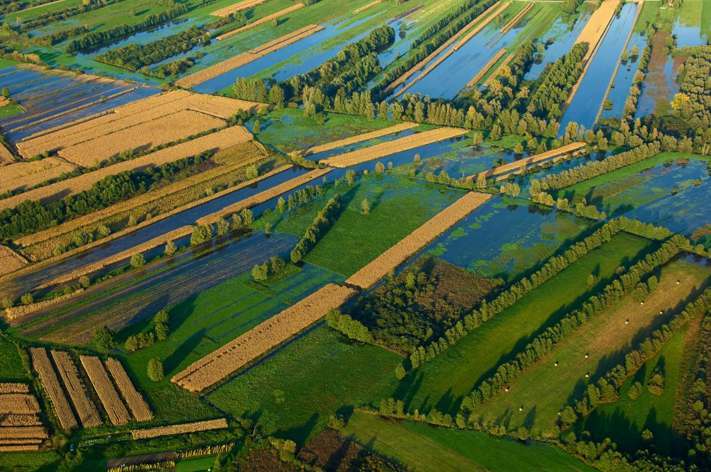 An aerial view of the Ljubljana marshlands in Slovenia