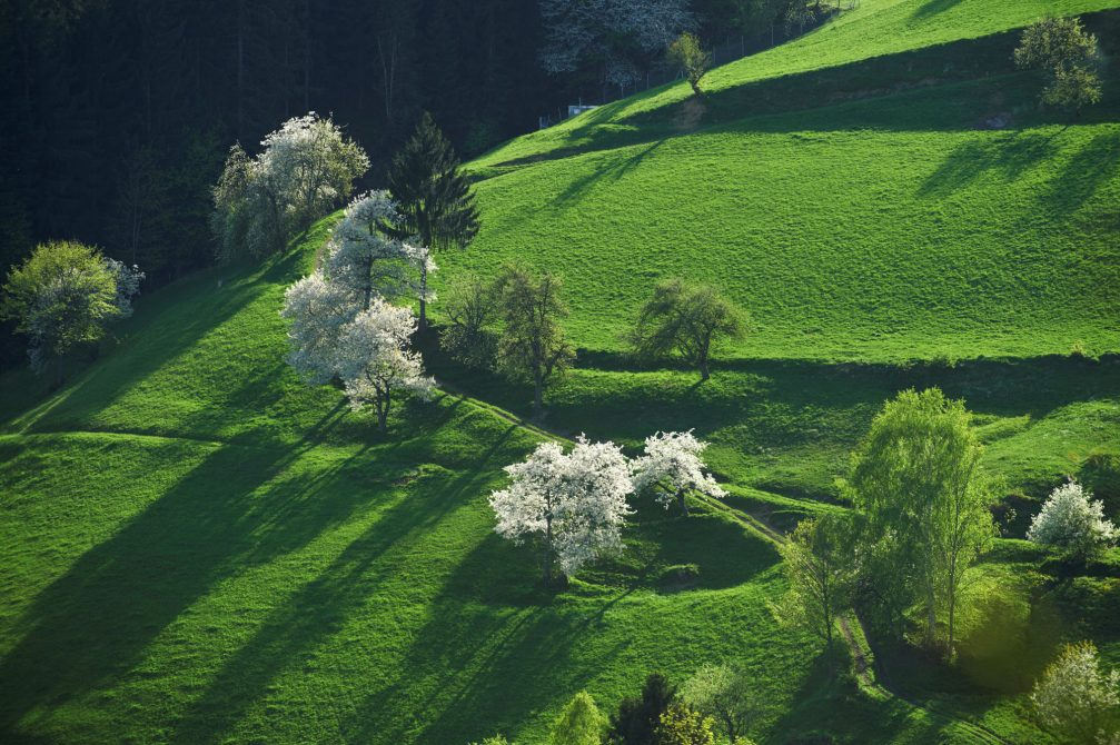 An aerial view of the countryside in the Koroska region of Slovenia in spring