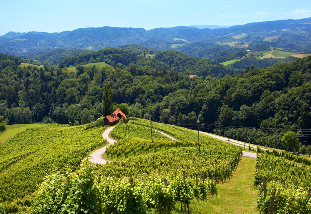 The famous heart-shaped road amidst the vineyards in eastern Slovenia