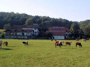 Exterior of Tourist Farm Hudicevec in Hrusevje in the Postojna area of Slovenia