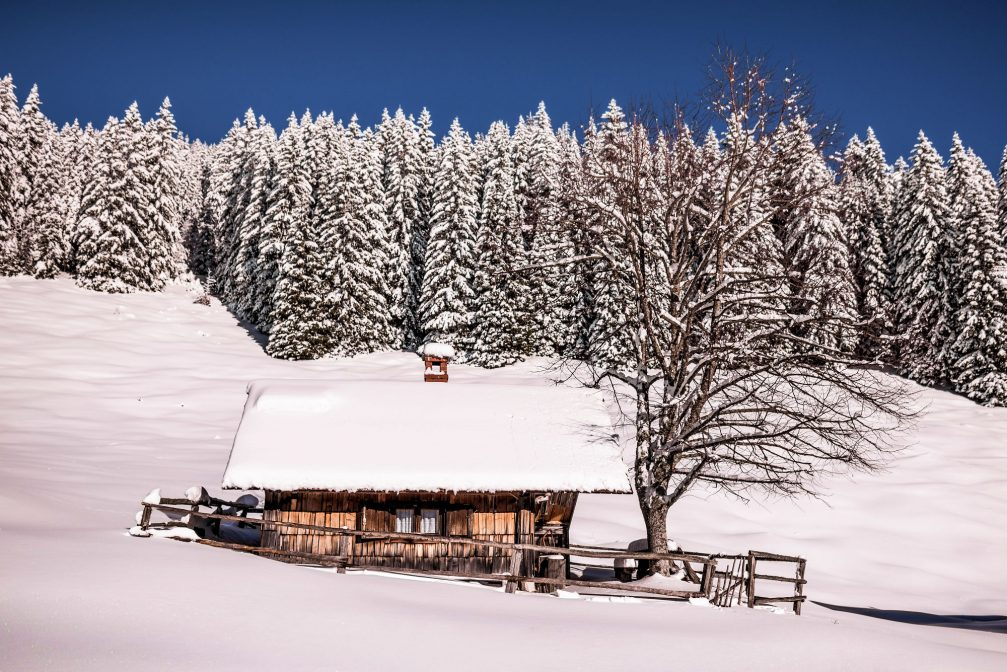 A lonely cottage covered with a thick layer of fresh snow in Pokljuka, Slovenia