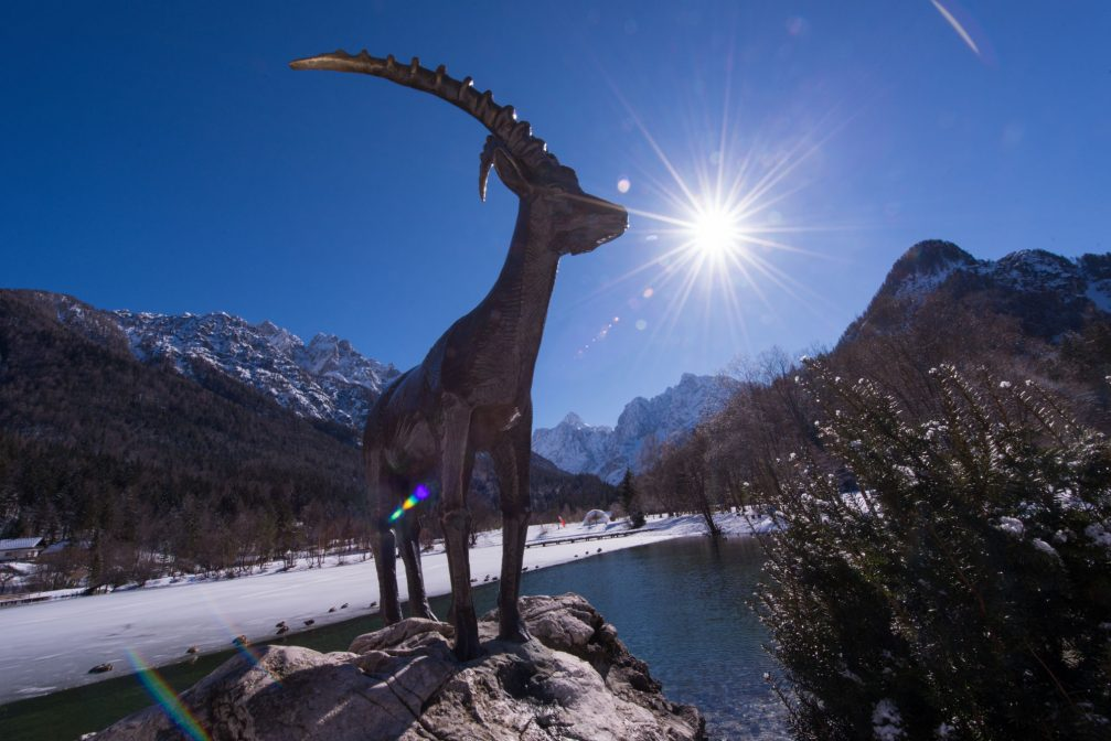 A statue of the Goldhorn or Zlatorog on a boulder by Lake Jasna in Kranjska Gora in the winter