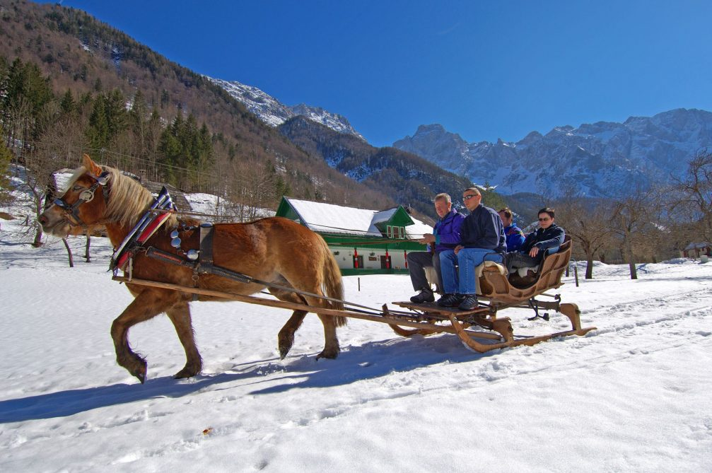 A horse-drawn sleigh in the Logarska Valley in the winter