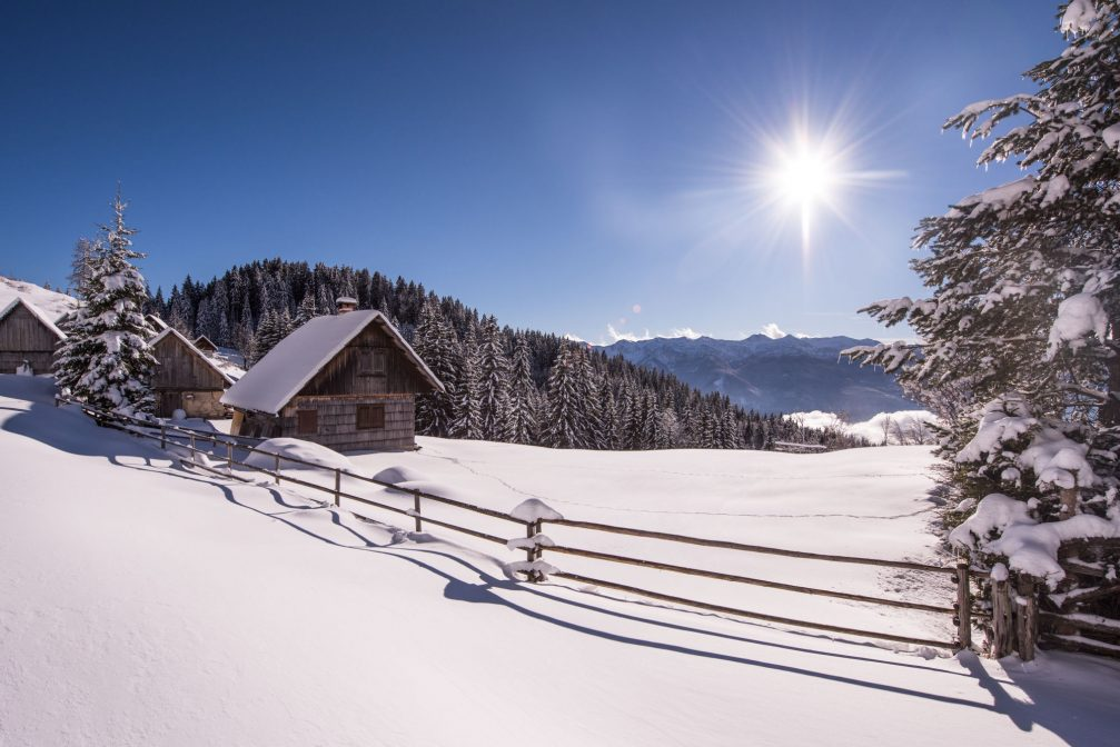 The Pokljuka Plateau in the winter with plenty of snow