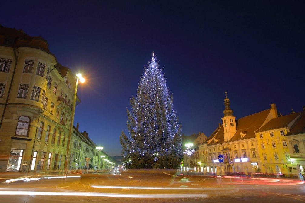 A Christmas tree in Maribor